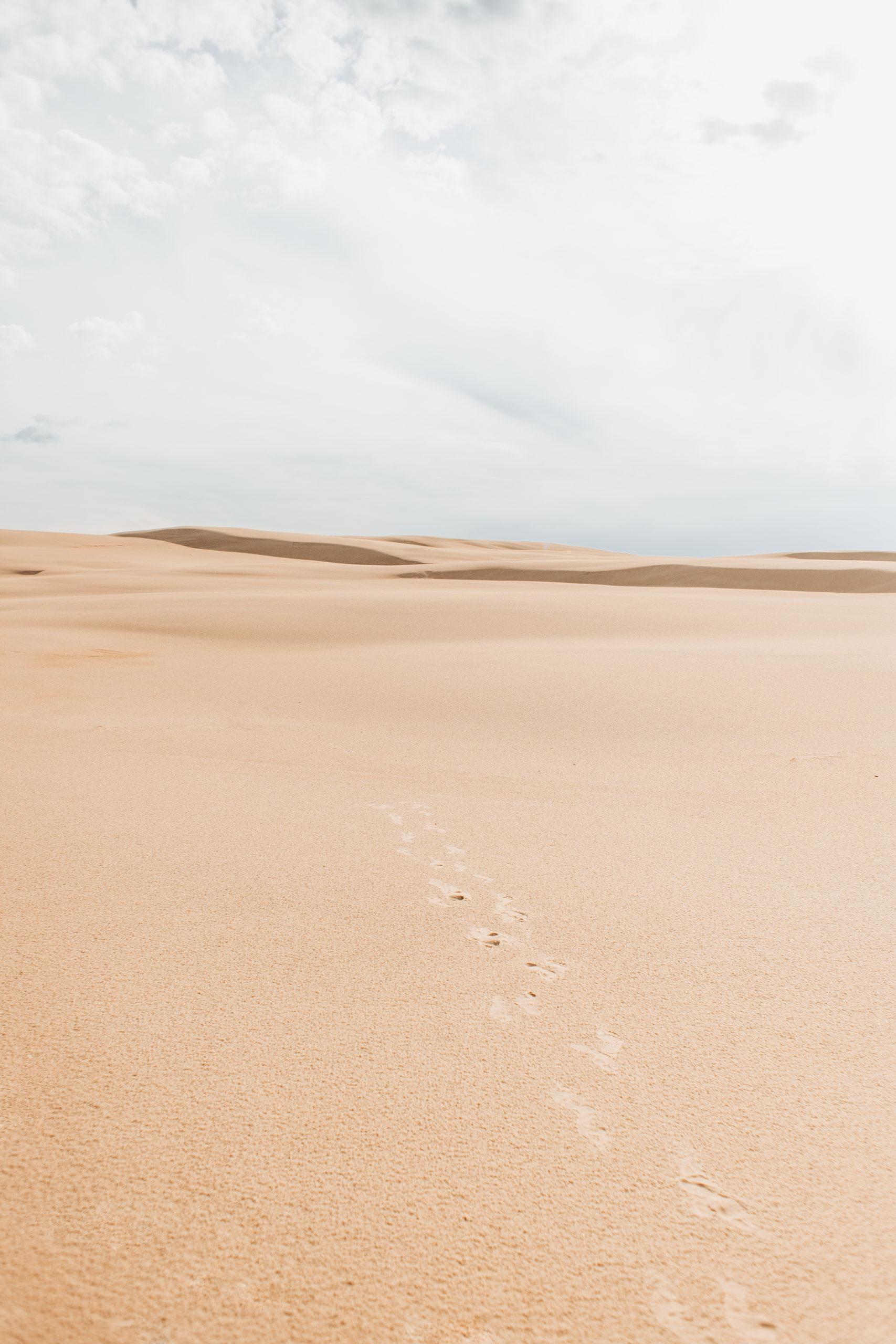 słowiński park narodowy ciekawostki
