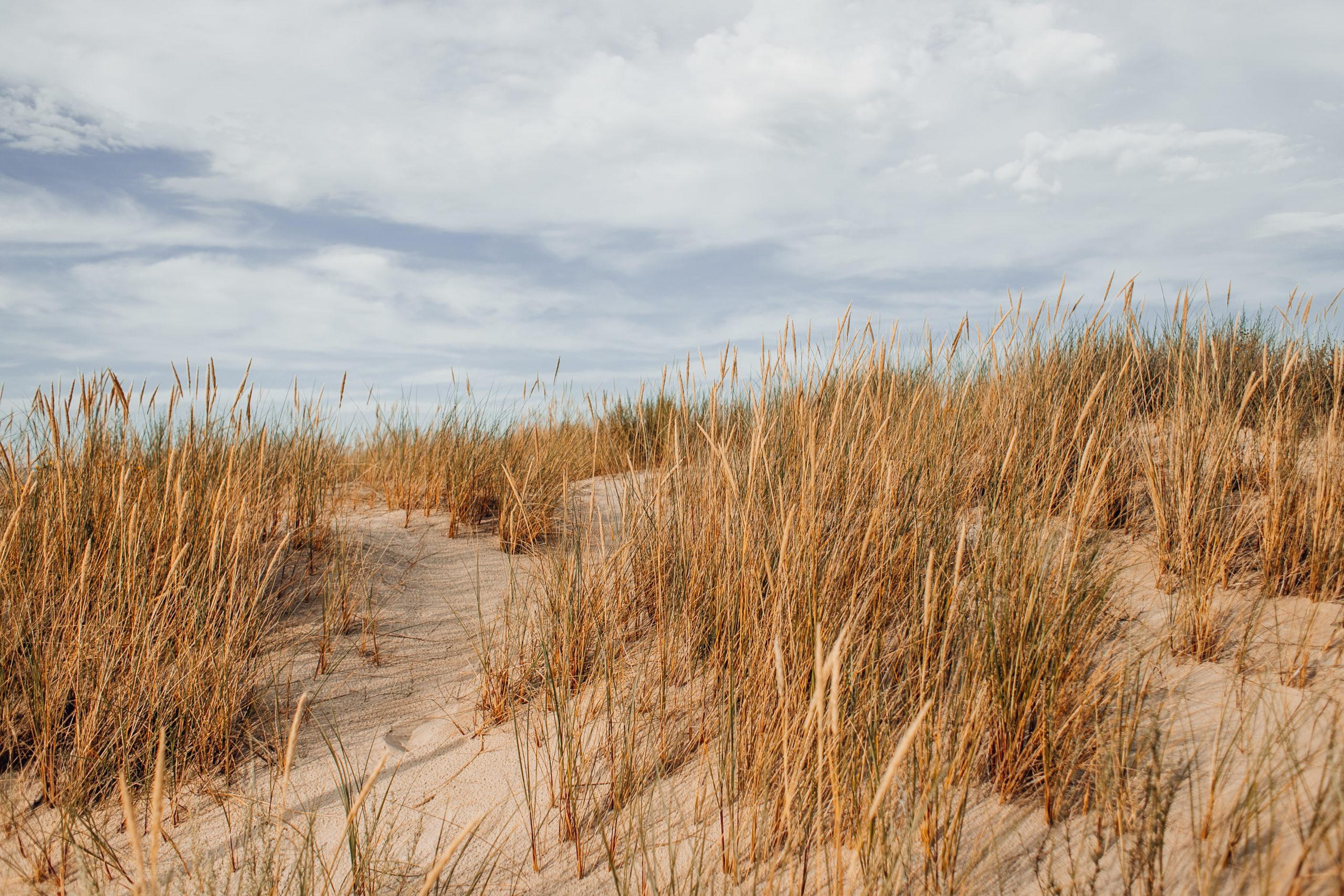 wydmy polskie wydma lacka slowinski park narodowy