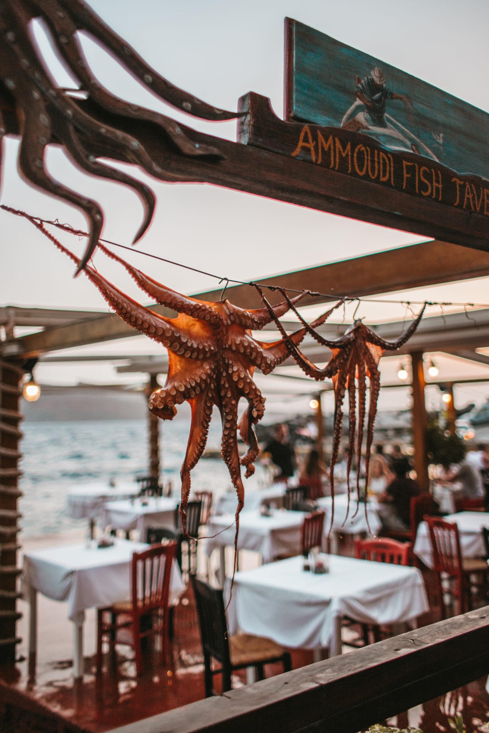 Oia atrakcje, Ammoudi Bay, Santorini restauracja, zachód słońca, ośmiornica