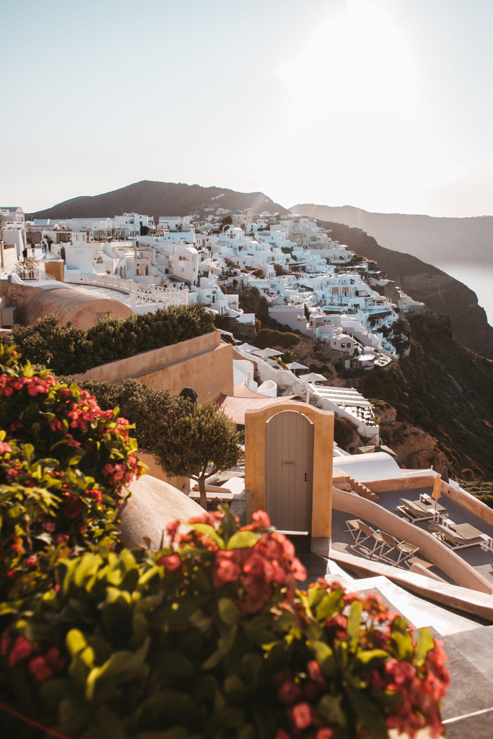 Santorini caldera, kaldera, Oia, wschód słońca, białe domki, kwiaty, Grecja